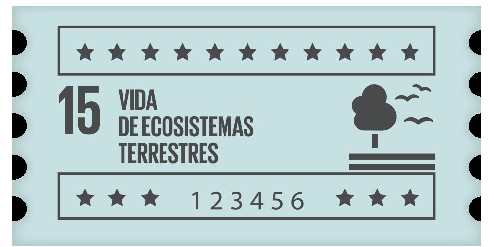 15- Vida de ecosistemas terrestres